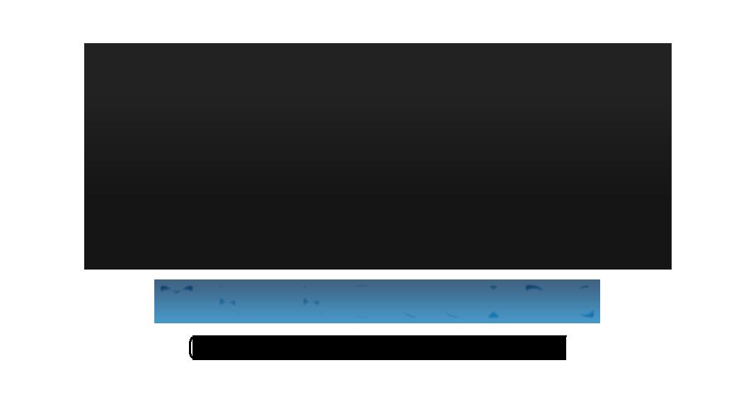 MR Rolling Gate