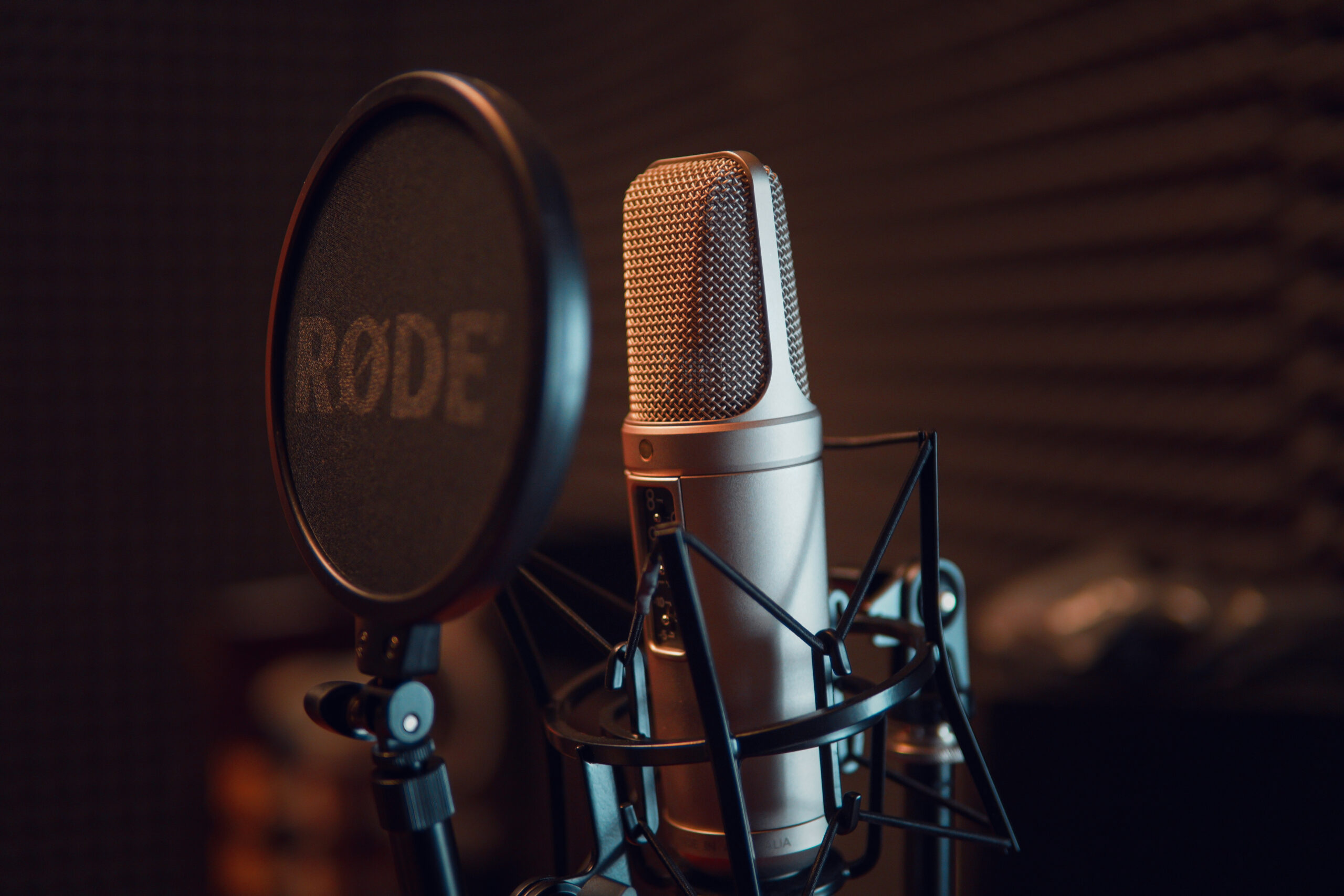 Canva - Silver Dynamic Microphone on Black Microphone Stand