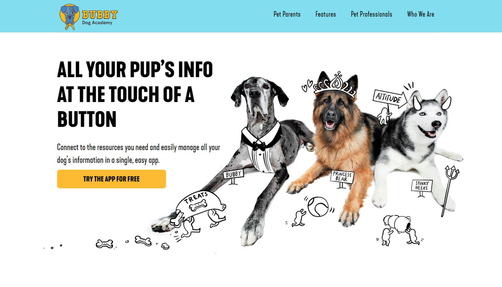 Bubby Dog Academy