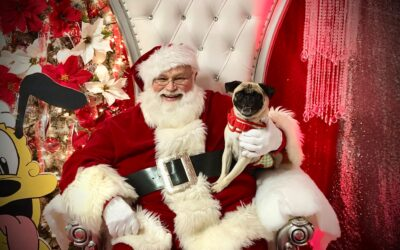 Pictures with Santa Paws!