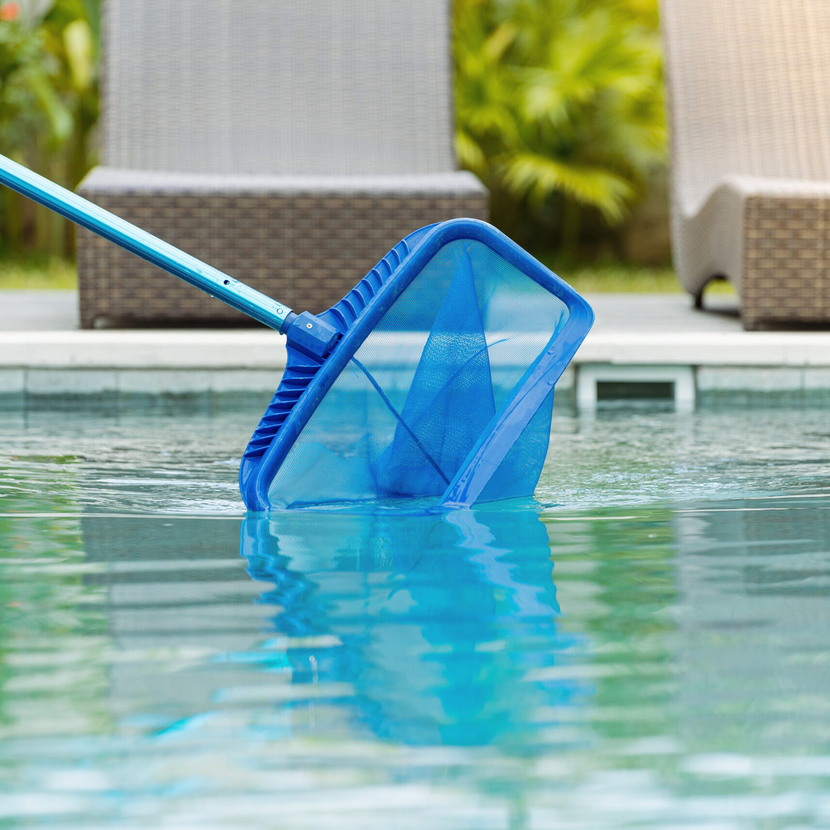 Cleaning,Swimming,Pool,Of,Fallen,Leaves,With,Skimmer,Net,Equipment
