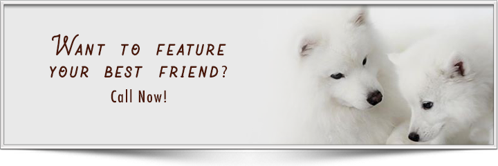 What to feature your best friend?