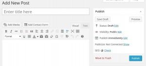 WordPress Publisher Area Publish Immediately option