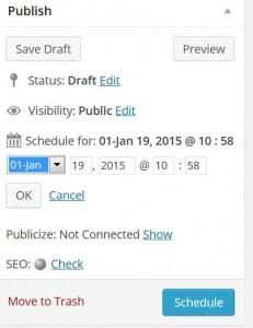 WordPress Publisher Area Schedule Publication option