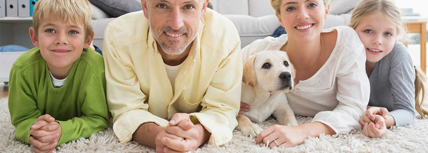 Carpet Cleaning Vancouver - Upholstery, Office & Pet Accident Removal Services New Westminster & Surrey