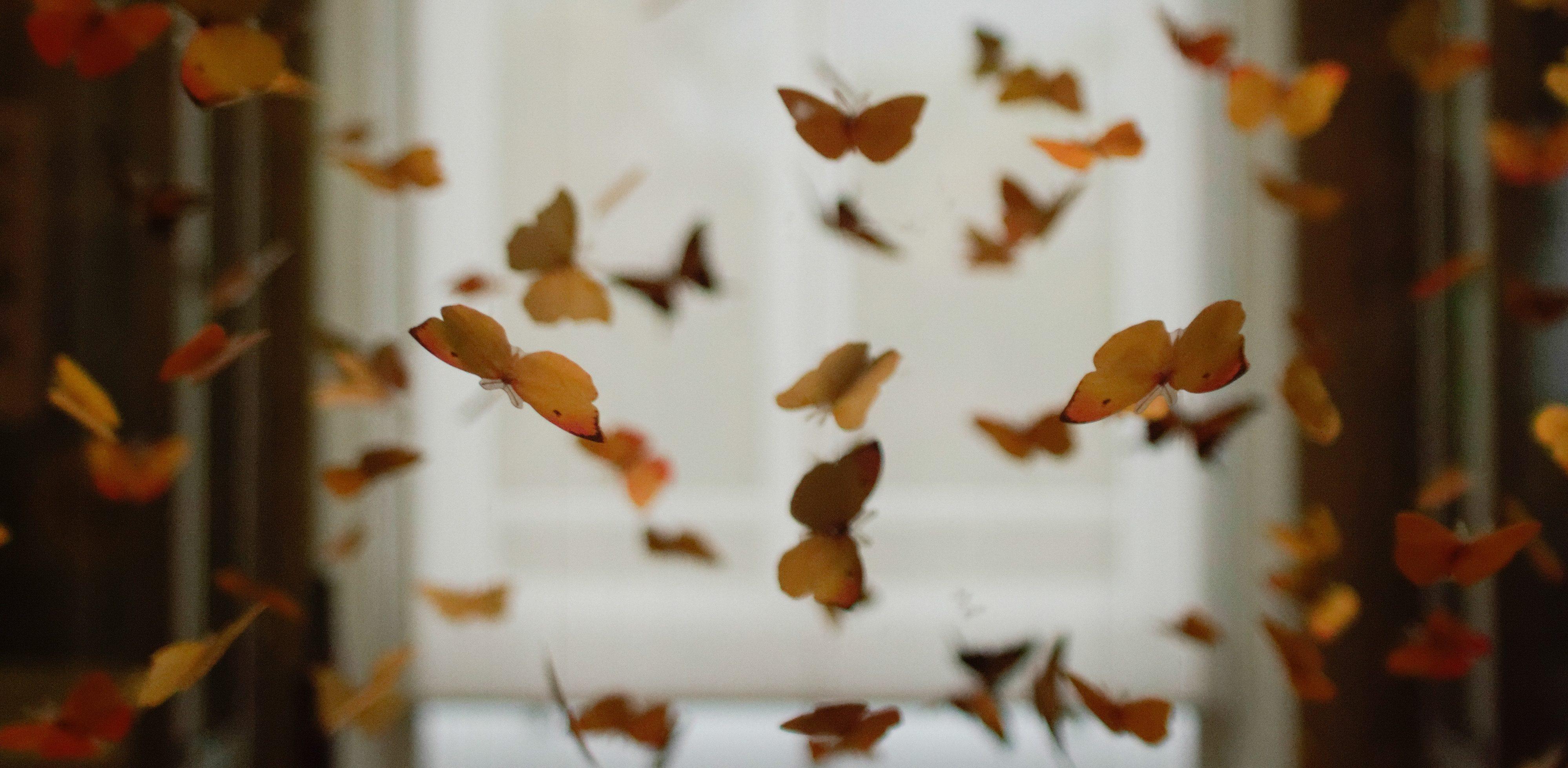 Touching Butterflies by Ronda Redmond