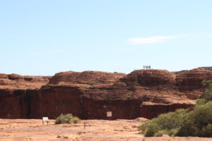 outback (10)