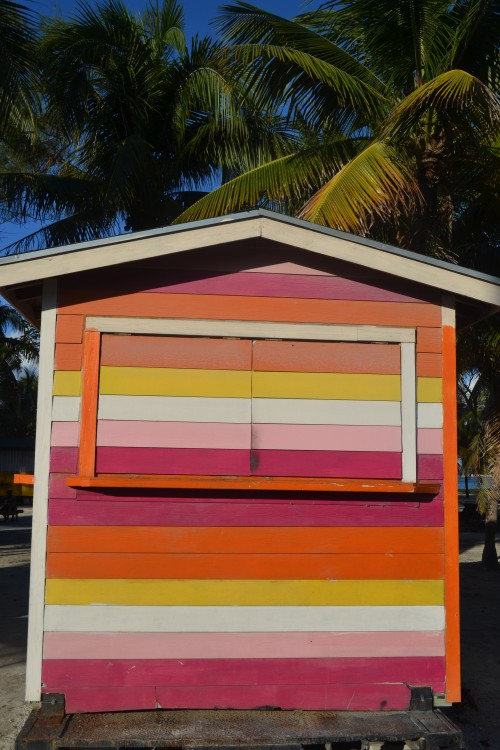 When I saw this, the first thought that came to mind: Psychedelic Shack