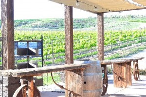 The beautiful scenery of Europa Winery is truly breath-taking! Photo Credit: Charles DeJesus