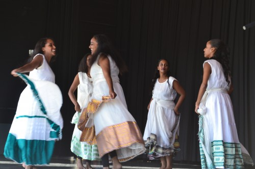 Dancers showcase graceful talent of rich Somali heritage.