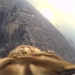 Le piqué d'un aigle depuis la plus haute tour du monde