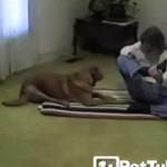 Ce chien fait du YOGA avec sa maîtresse et prouve se souplesse.