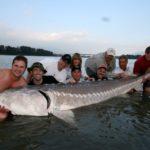 Top 10 des plus gros poissons d'eau douce