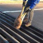 Il sauve un kangourou coincé dans une grille.
