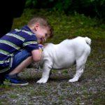 L'influence d'un animal dans l'éducation des tout-petits