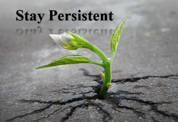 Stay Persistent
