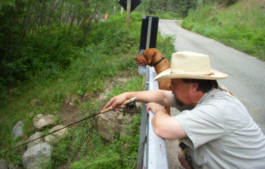 A Man and his dog spot fish on Holy Ghost Creek