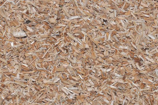 Mulch Seed