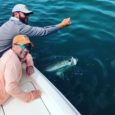 Key West May Tarpon