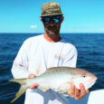 Key West Yellowtail Snapper