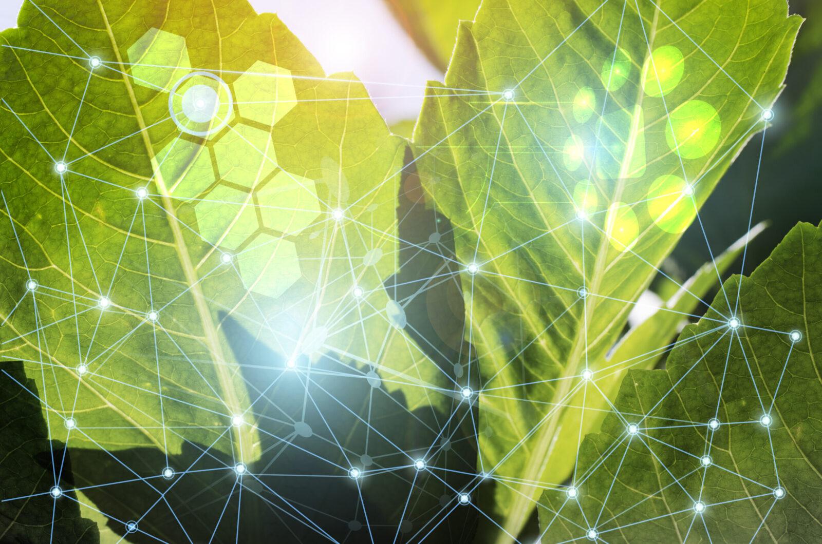 Life Sciences Managed Salesforce Optimization