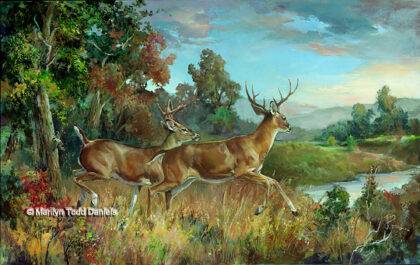 'Bachelor Run' by Todd-Daniels | Woodsong Institute