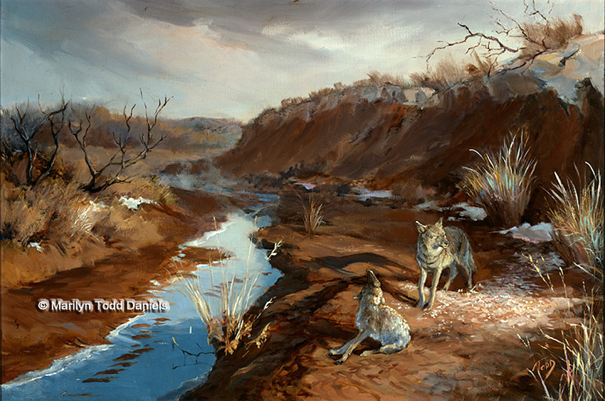 'Coyotes' by Todd-Daniels | Woodsong Institute