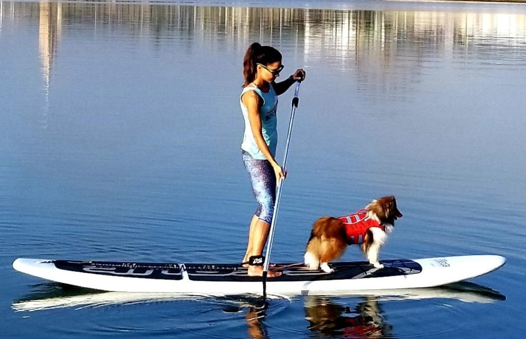 SUP PUP classes at water dog in Corpus Christi