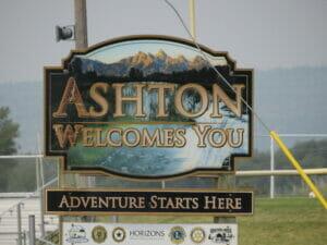 Ashton ID 01