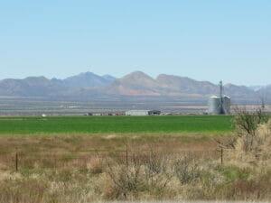 McNeal AZ 15