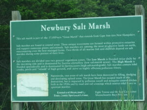 Newbury MA 07
