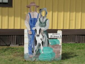 Mt Vernon TX 17