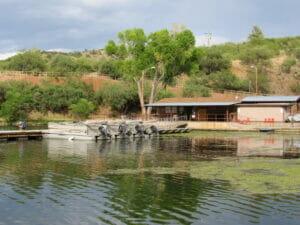 Patagonia Lake AZ 05