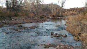 San Pedro River AZ 02