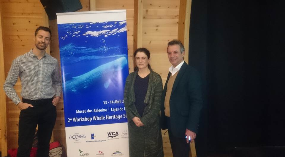 The Azores – bidding for Whale Heritage Site status