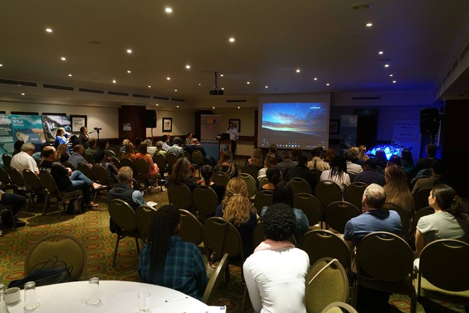 WHS Summit Review, South Africa, 2017
