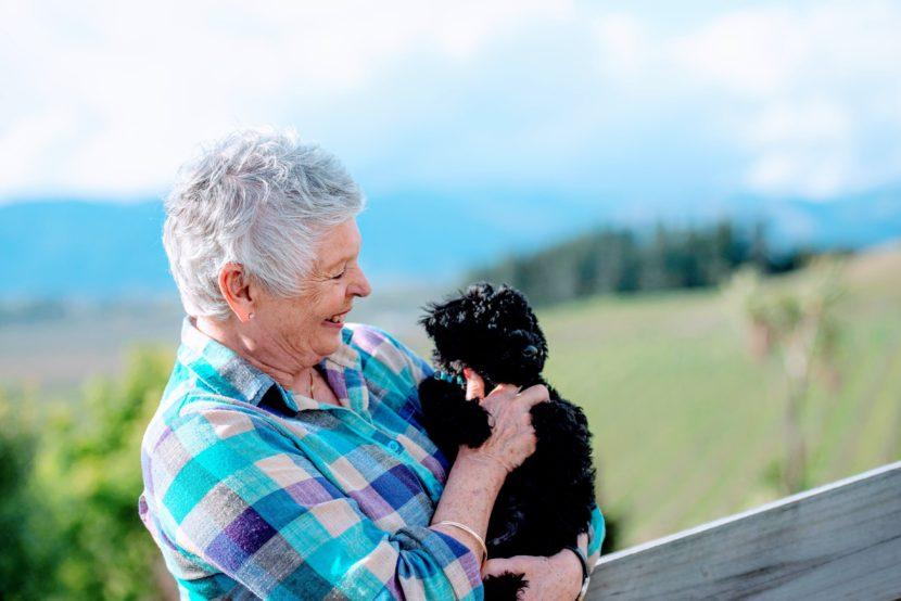 chris-steadman-ntrance-hypnotherapy-blenheim-puppy