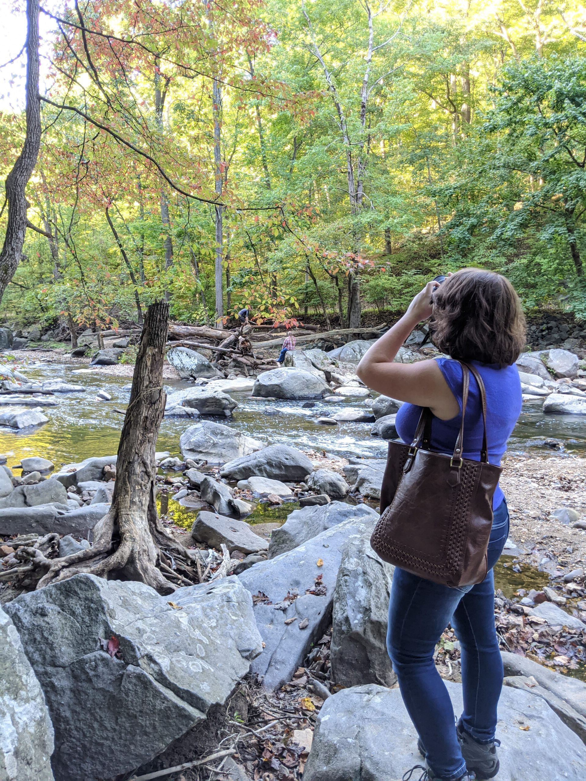 Gina Phipps taking photo of trees and stream