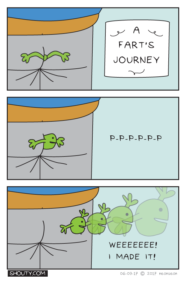 A Fart's Journey