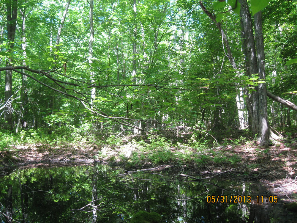 Avalonia Receives $945,750 In Open Space Grants