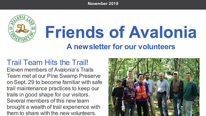 Volunteer Newsletter: November 2018