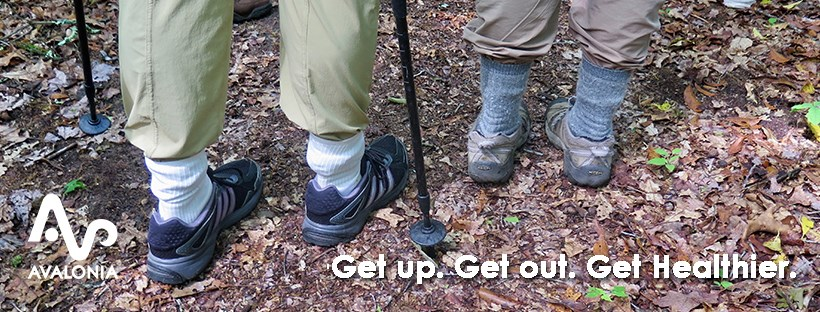 Introducing Avalonia Hikes Facebook Group