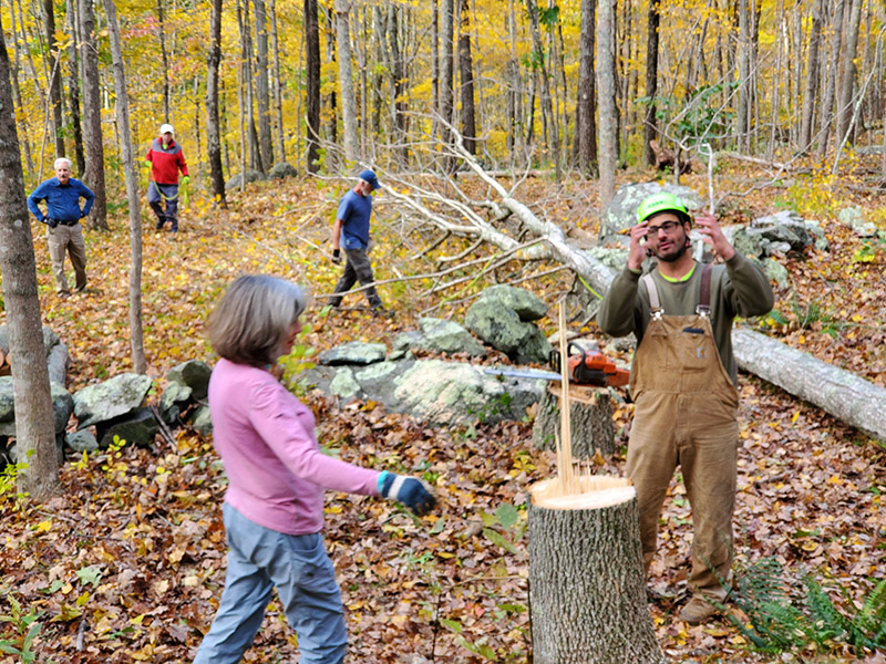Volunteer Tree Work At TriTown Forest Preserve