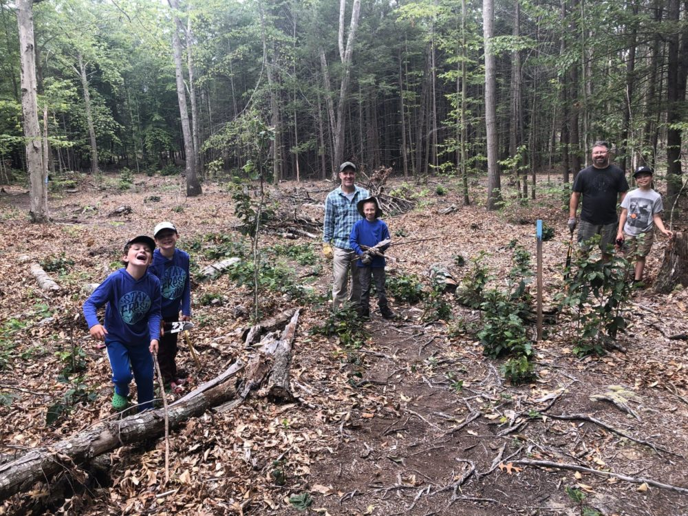 Adapting To An Uncertain Climate Future, Connecticut Auditions New Forests