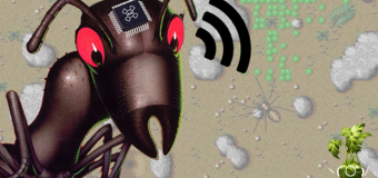 How the Internet Archive created the Sim Ant Exterminator