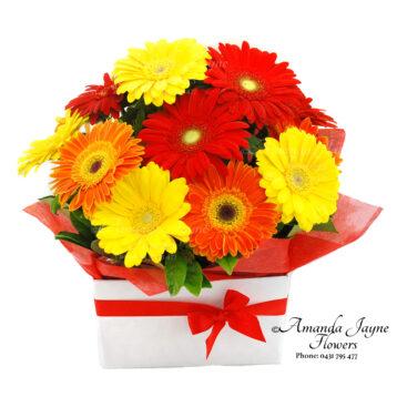Bright Delight Gerbera box arrangement
