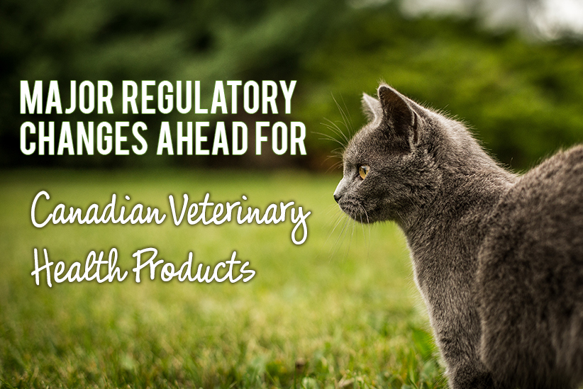 Major Regulatory Changes Ahead for Canadian Veterinary Health Products!
