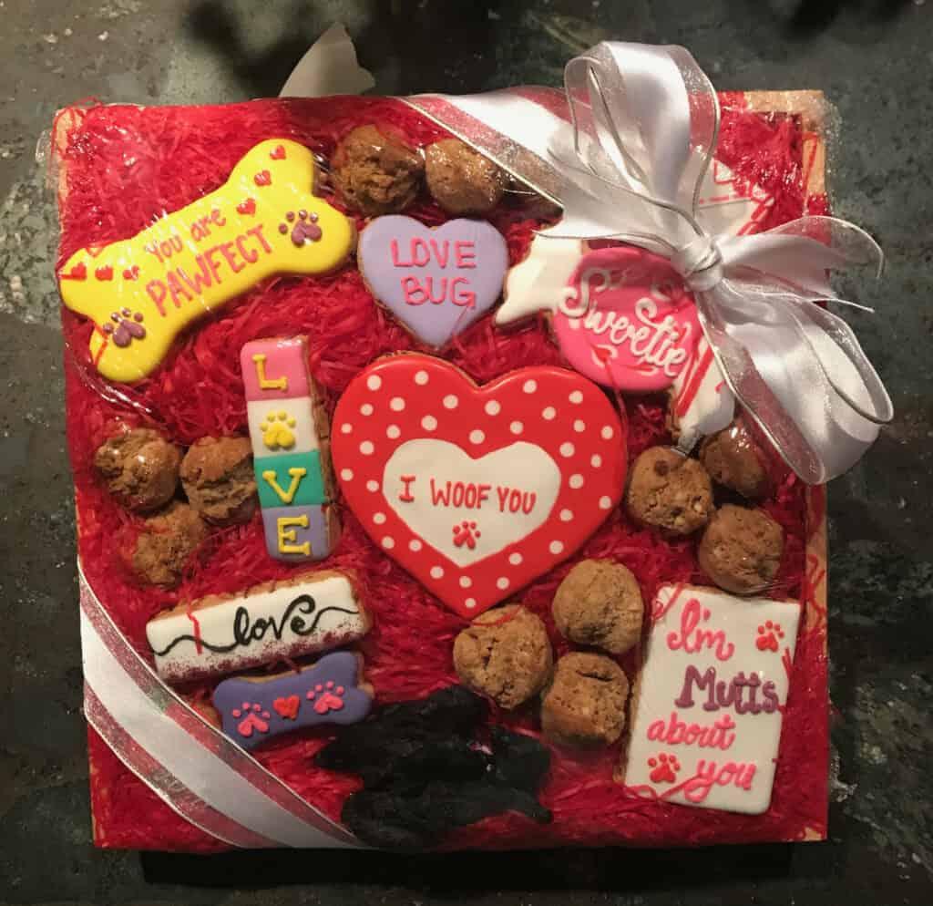 gluten free grain free decorated dog treats