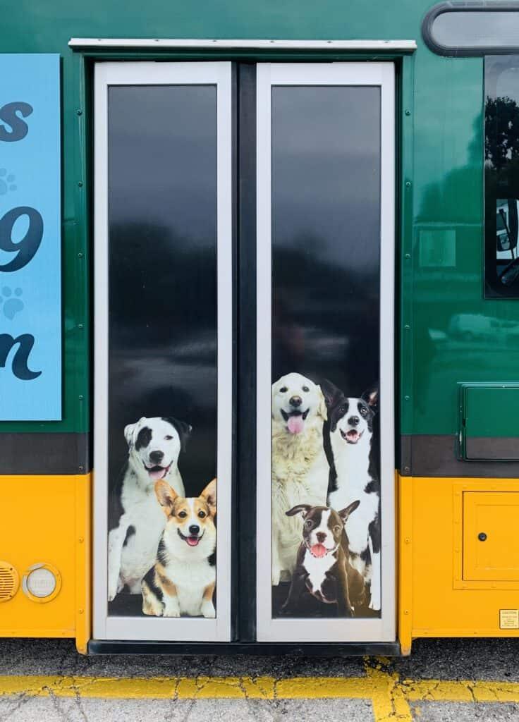 duper dogs bus doors dog uber for pets pet taxi