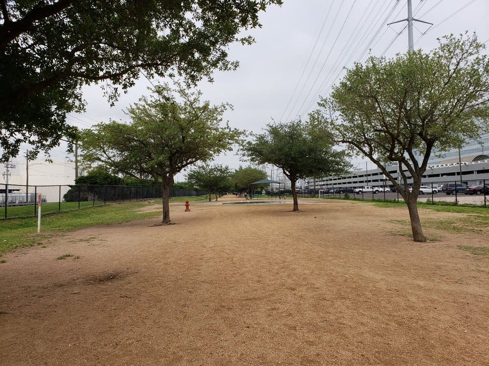 picture of danny jackson dog park